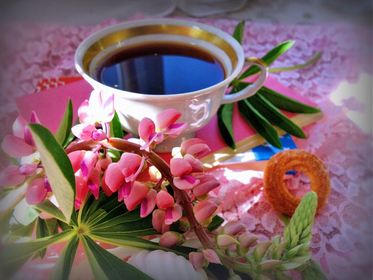 пошаговый цветы чая картинки идеально