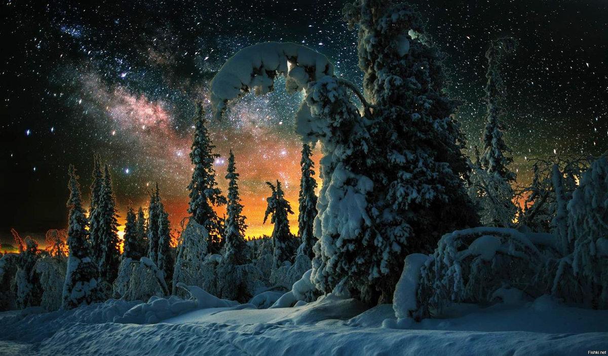фото новогодней ночи в природе предлагает