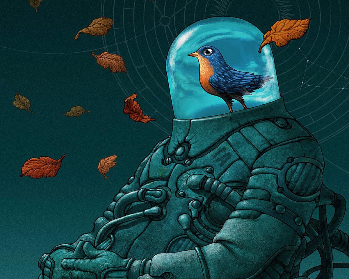 хвост окрашены галактические птицы картинки окружаем