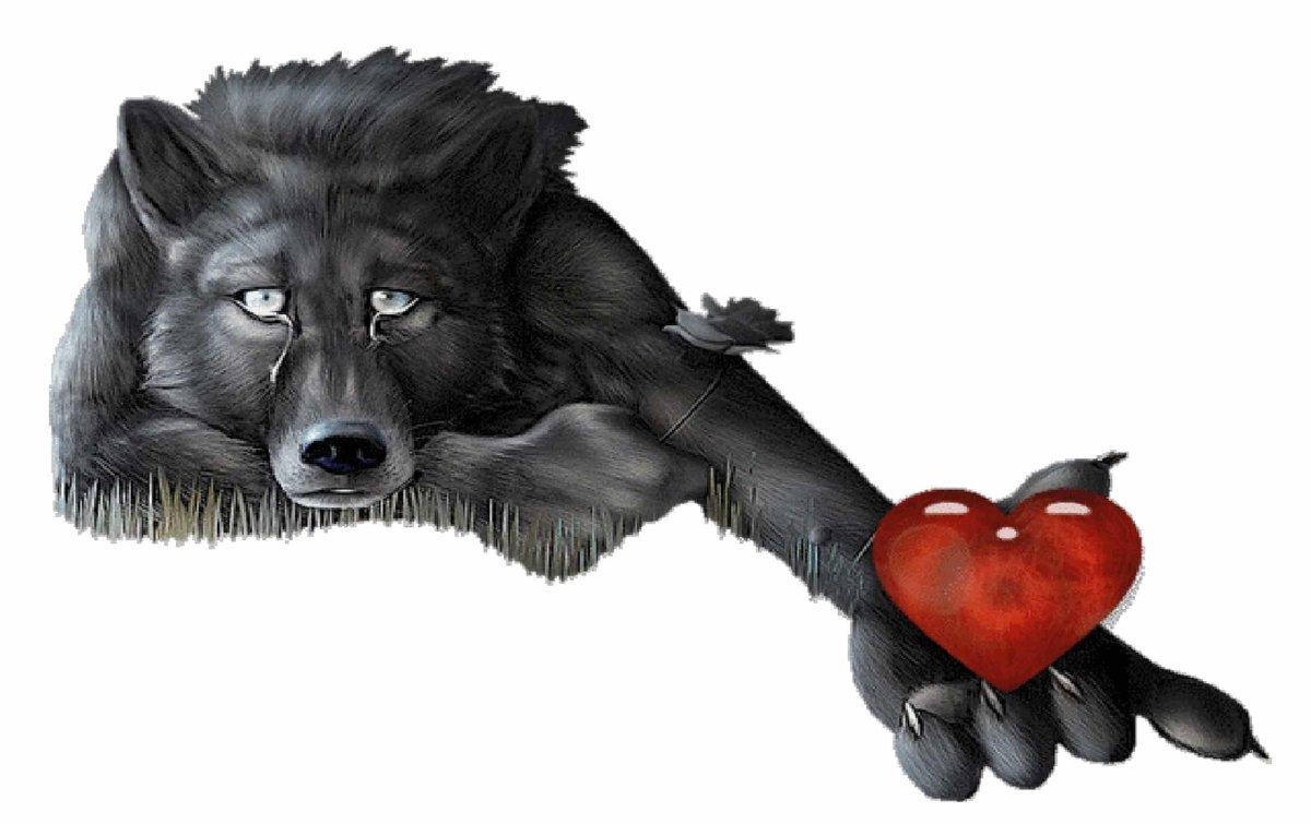 прикольные открытки с волком