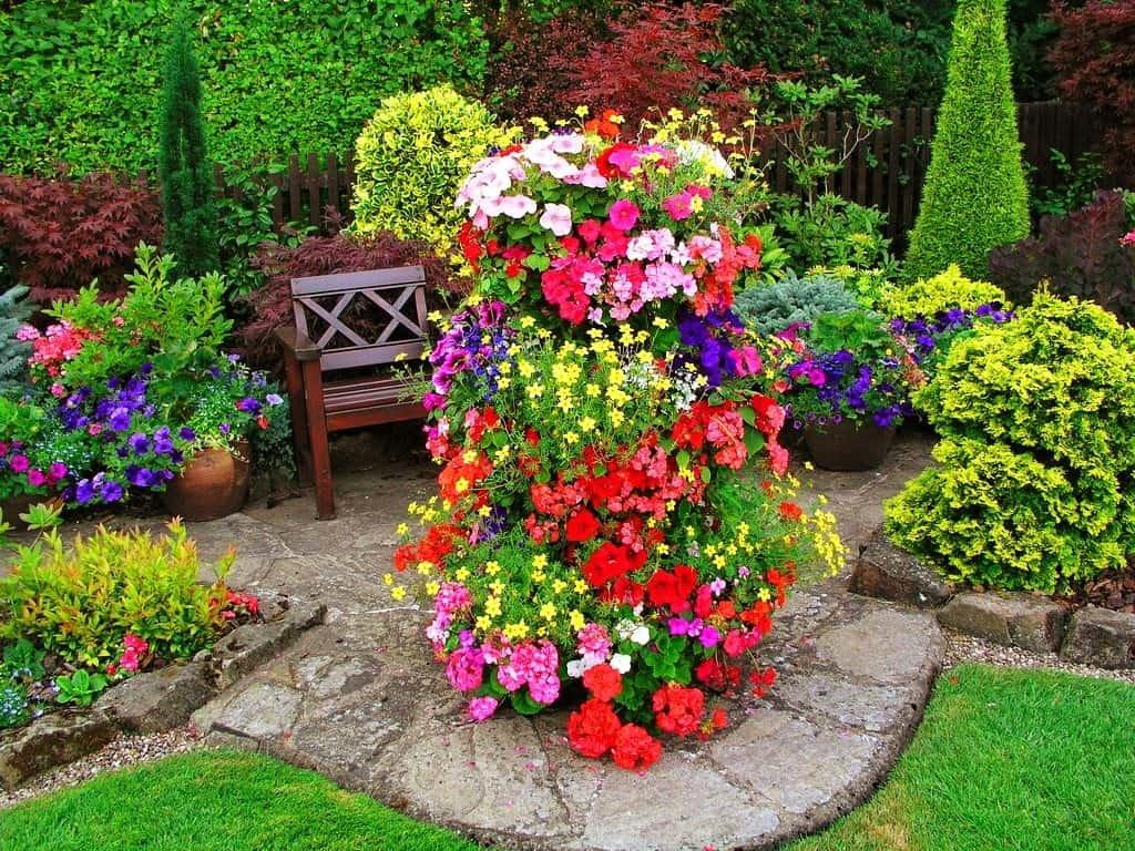 Цветники и клумбы своими руками на даче фото цветущее всё лето фото фото 943