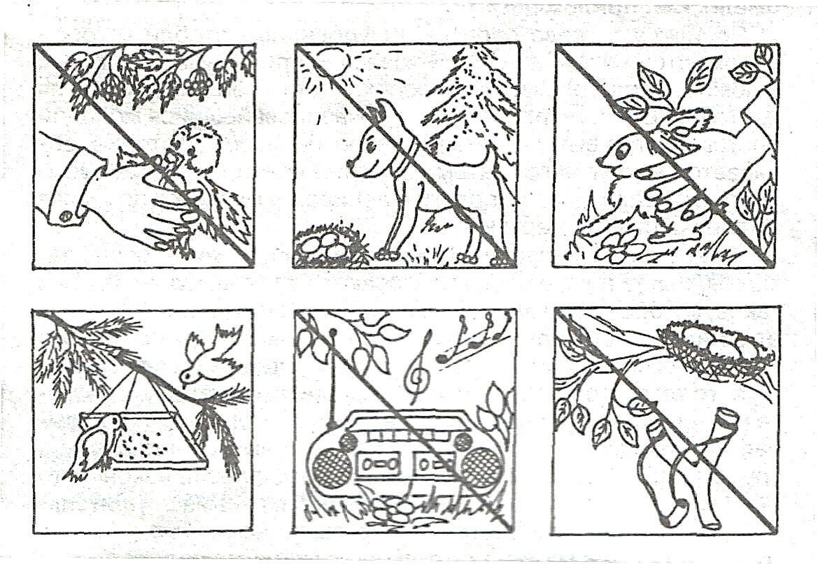 Картинки охрана природы для детей