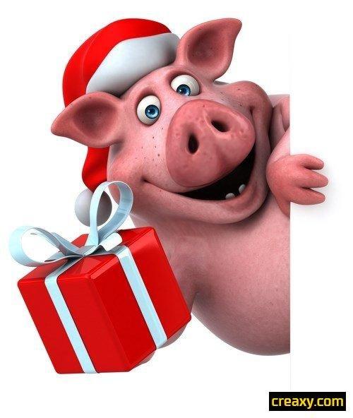 Днем рождения, смешные картинки к новому году свиньи