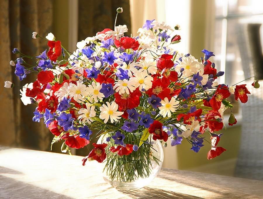 Картинки букет полевых цветов, приятных снов