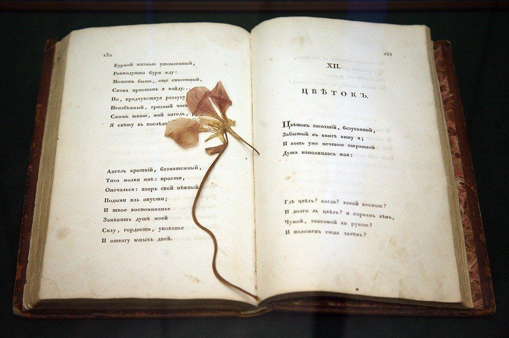 картинки про стихи все страницы