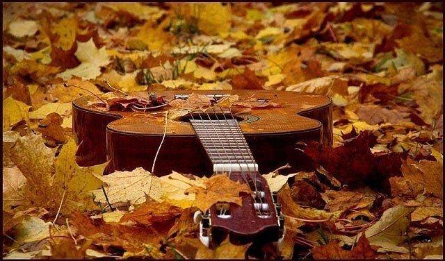 Насте рыбке экстренно вызвали скорую: музыка опадающих листьев, последних солнечных деньков.