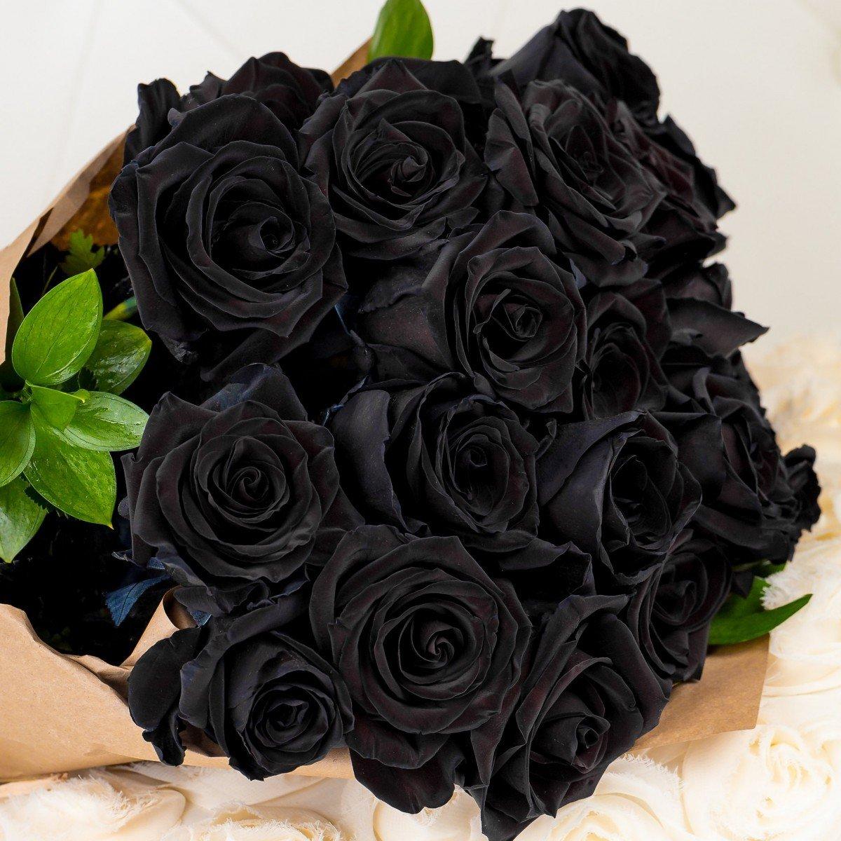 цепляются картинки чорних троянд шесть лет она