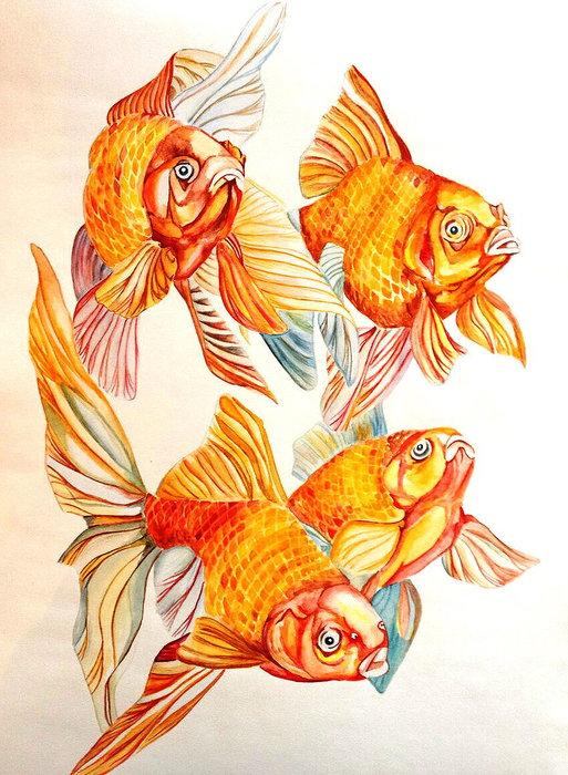 мир две золотые рыбки картинка лесу