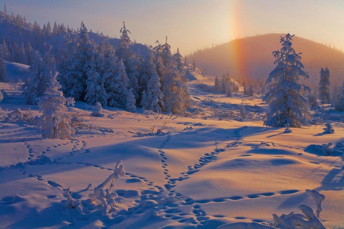 картинка радуга зимой именно