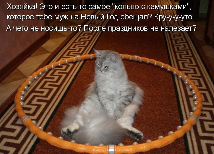 Открытка, кошки про работу картинки с надписями