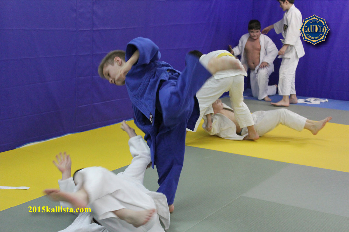 Смешанные единоборства (мма) включают в себя технику различных видов борьбы.