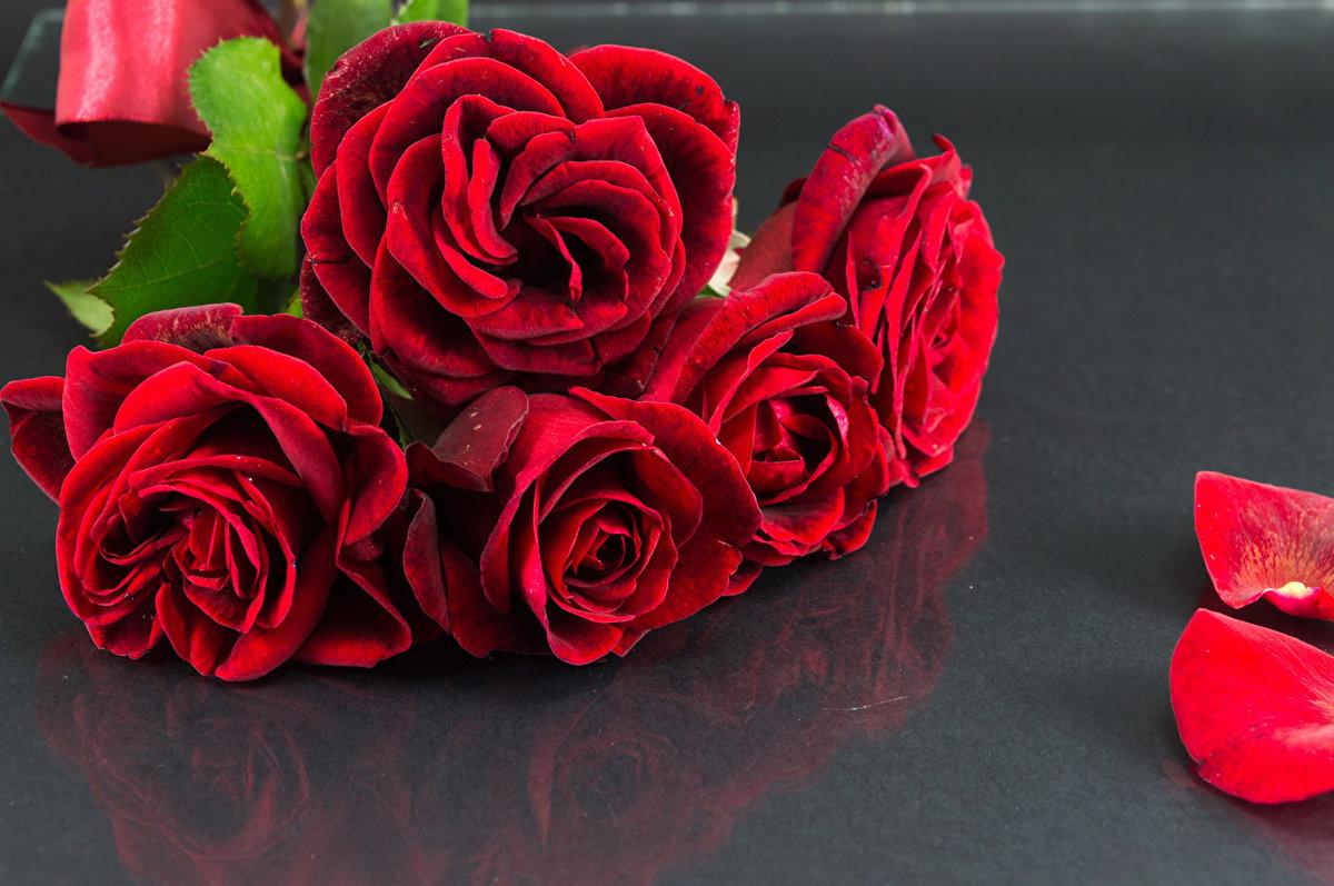 Открытки привет роза