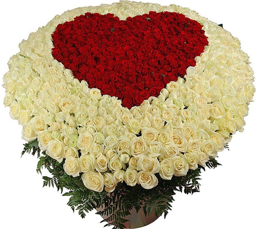 Картинка с днем рождения большой букет роз, музыкальные для друга