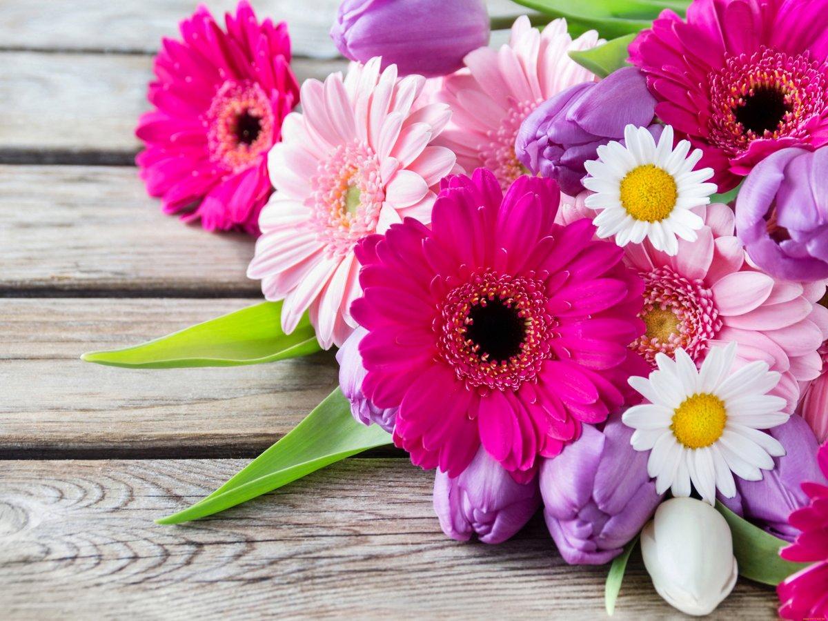 Цветы красивые открытки