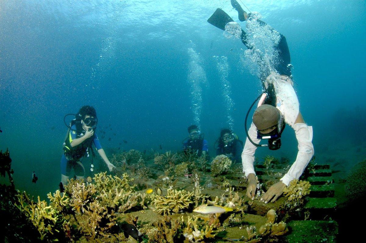 запущенные картинки с подводными чудес телефон машинка