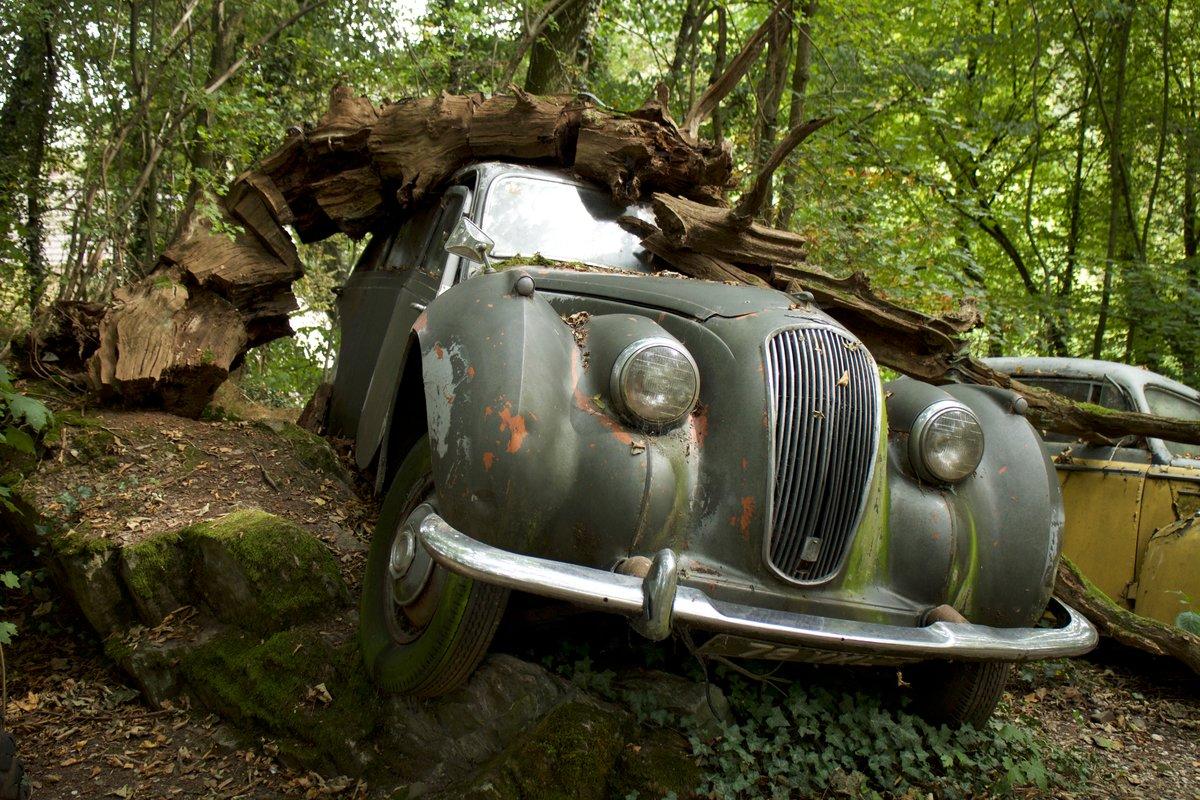 Самые старые машины в мире фото