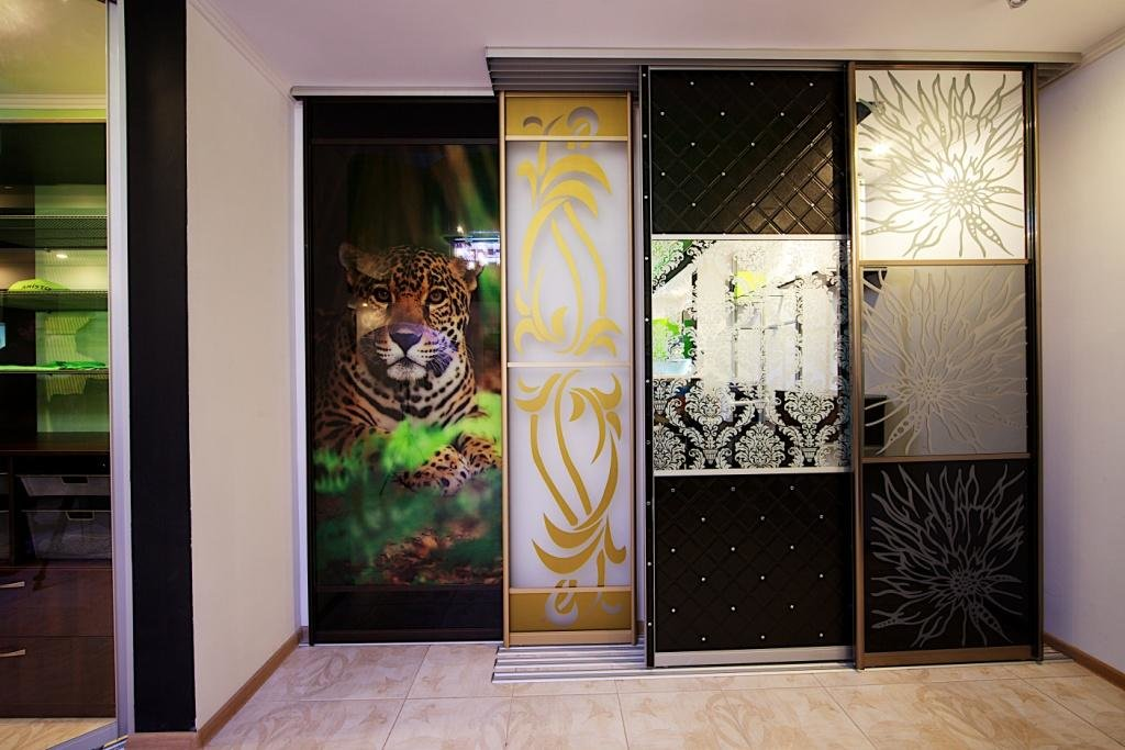 можете дизайн дверей для шкафов купе картинки разработали