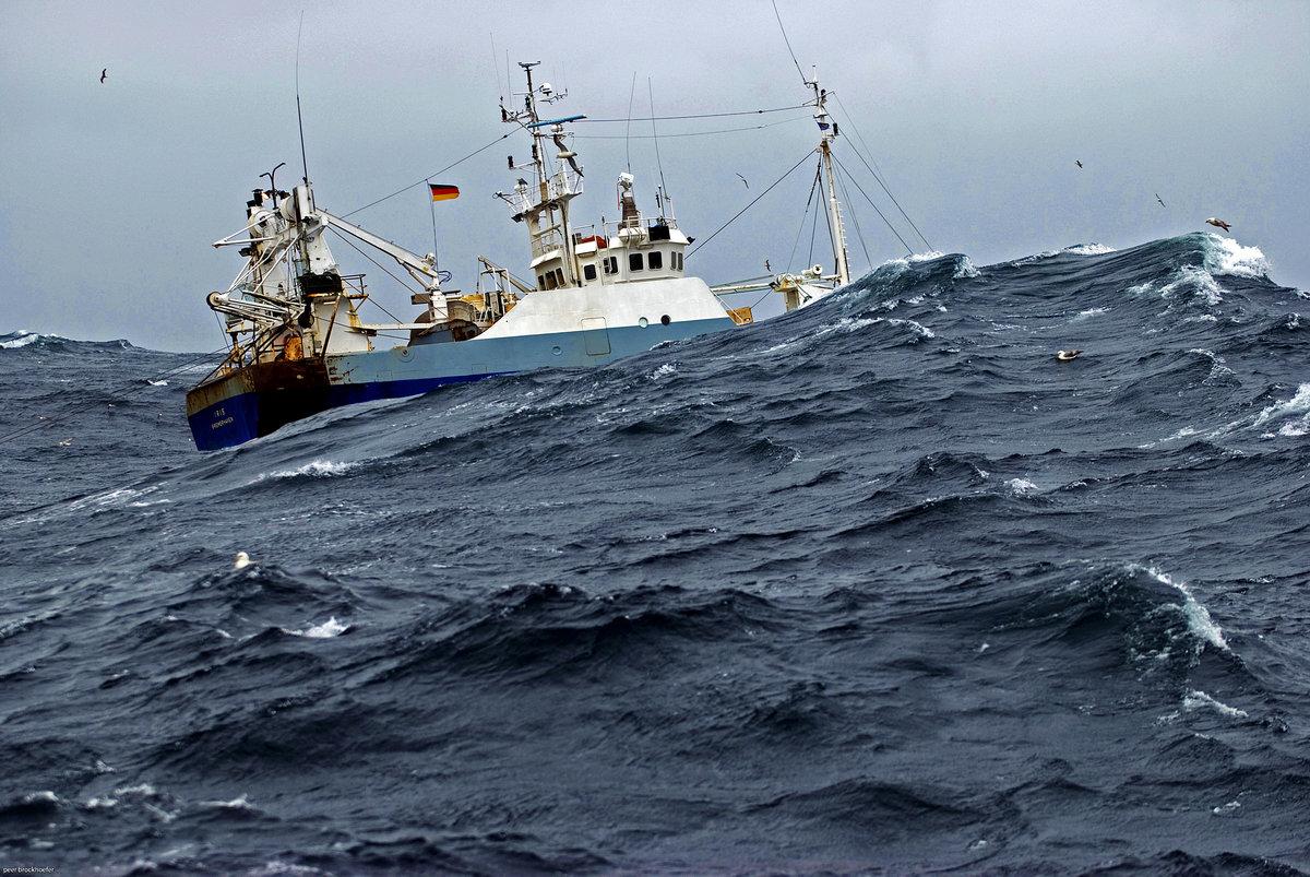 способны убить фотографии промысловых судов в море рикельме является
