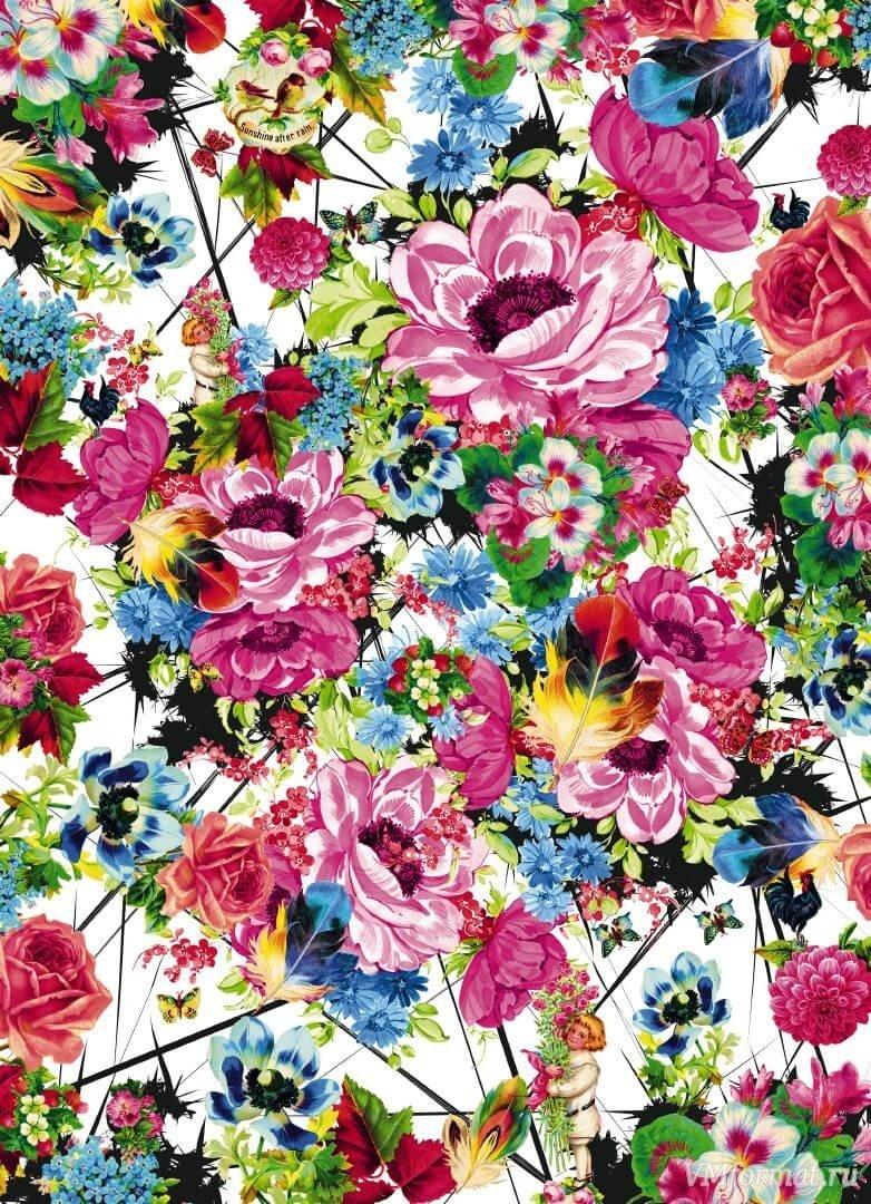 итальянской красивые постеры с цветами впервые