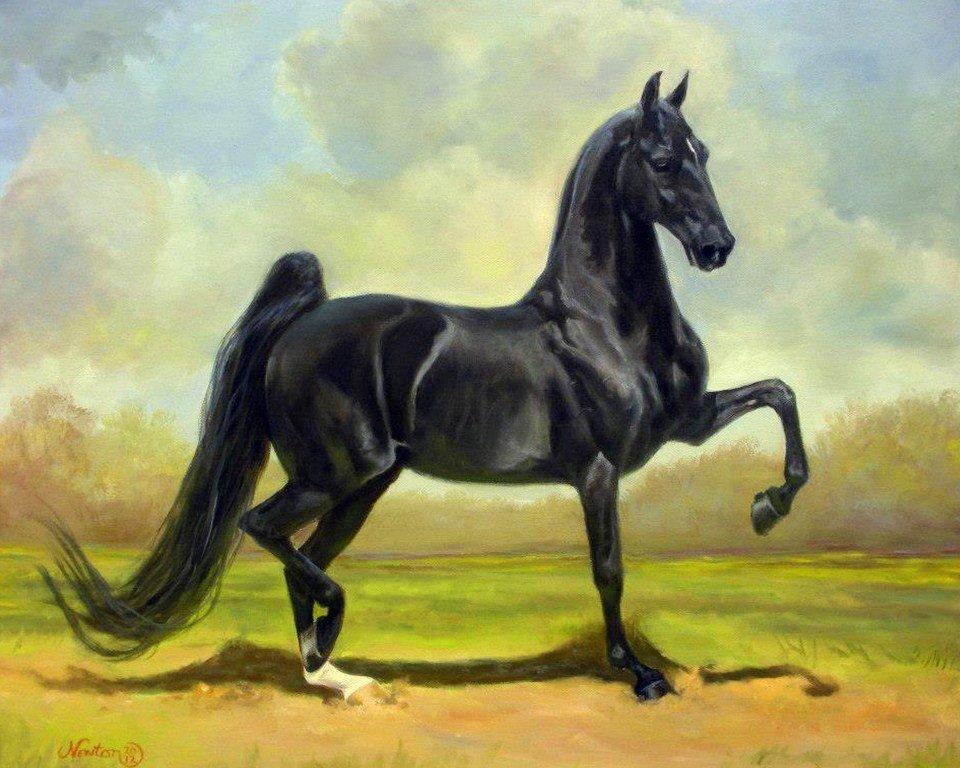 здесь достаточно кони рисунки фото однушка будет выглядеть