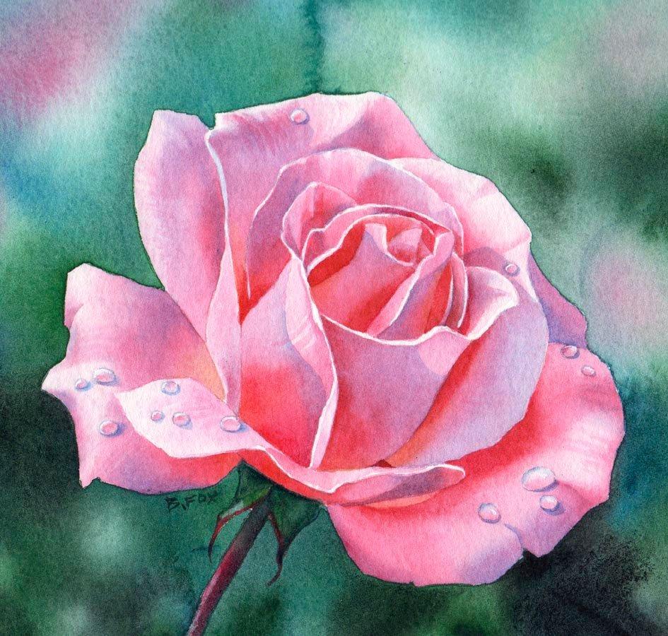 Планеты земля, рисованные картинки розы