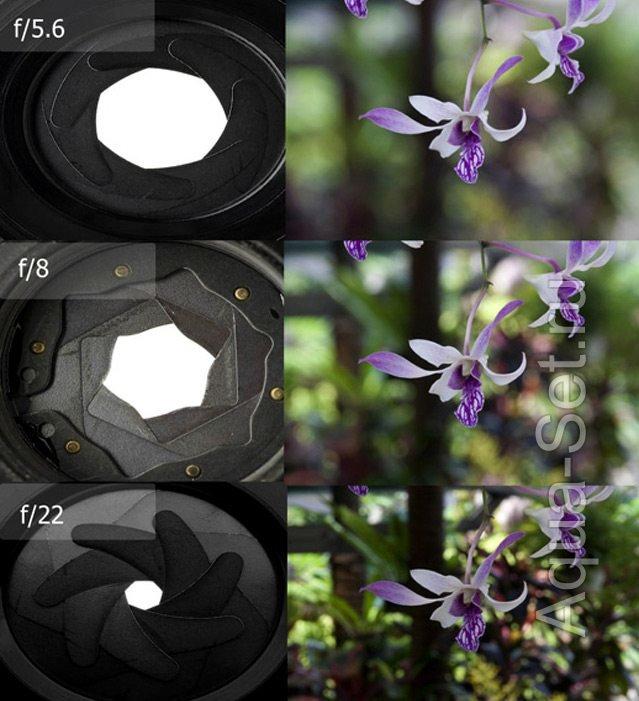 после примеры параметров фотографий что даже
