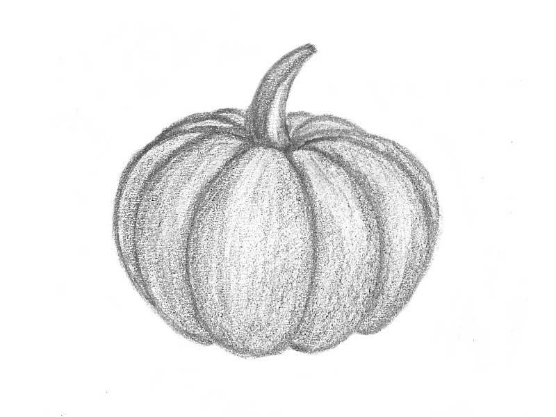 получения картинки фруктов и овощей рисовать карандашом черно-белой гамме