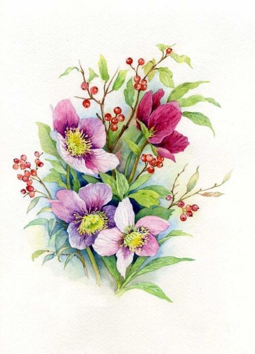 Рождением, цветы для открыток рисованные
