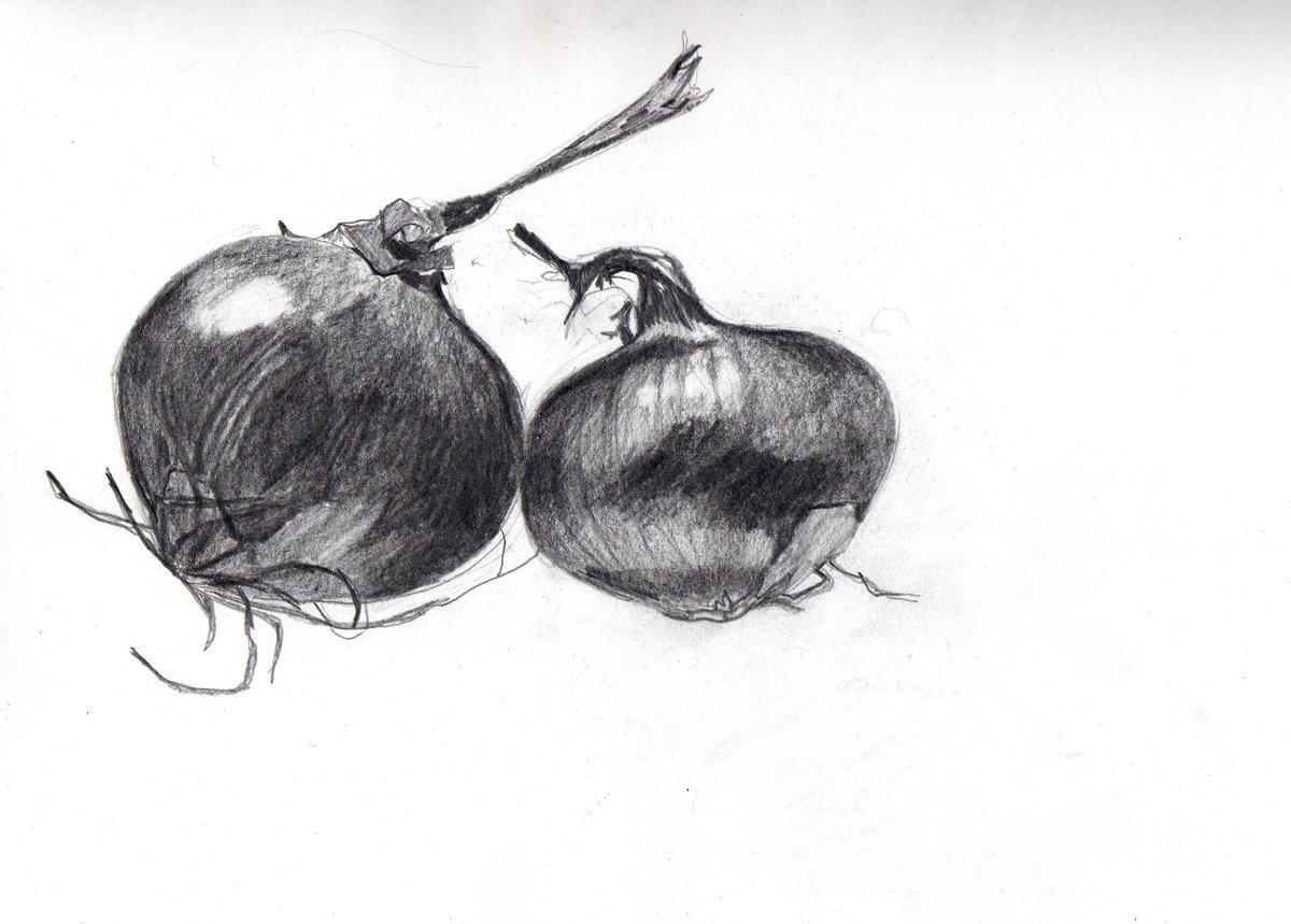 пригласить картинки фруктов и овощей рисовать карандашом различия