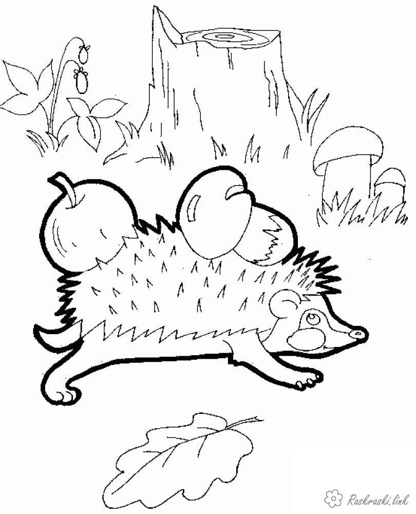 «Раскраски про осень» — карточка пользователя Смурфетта в ...