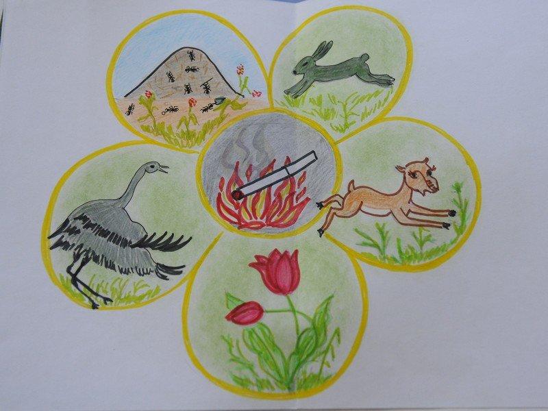 Картинки защита природы для 1 класса, для жены днем