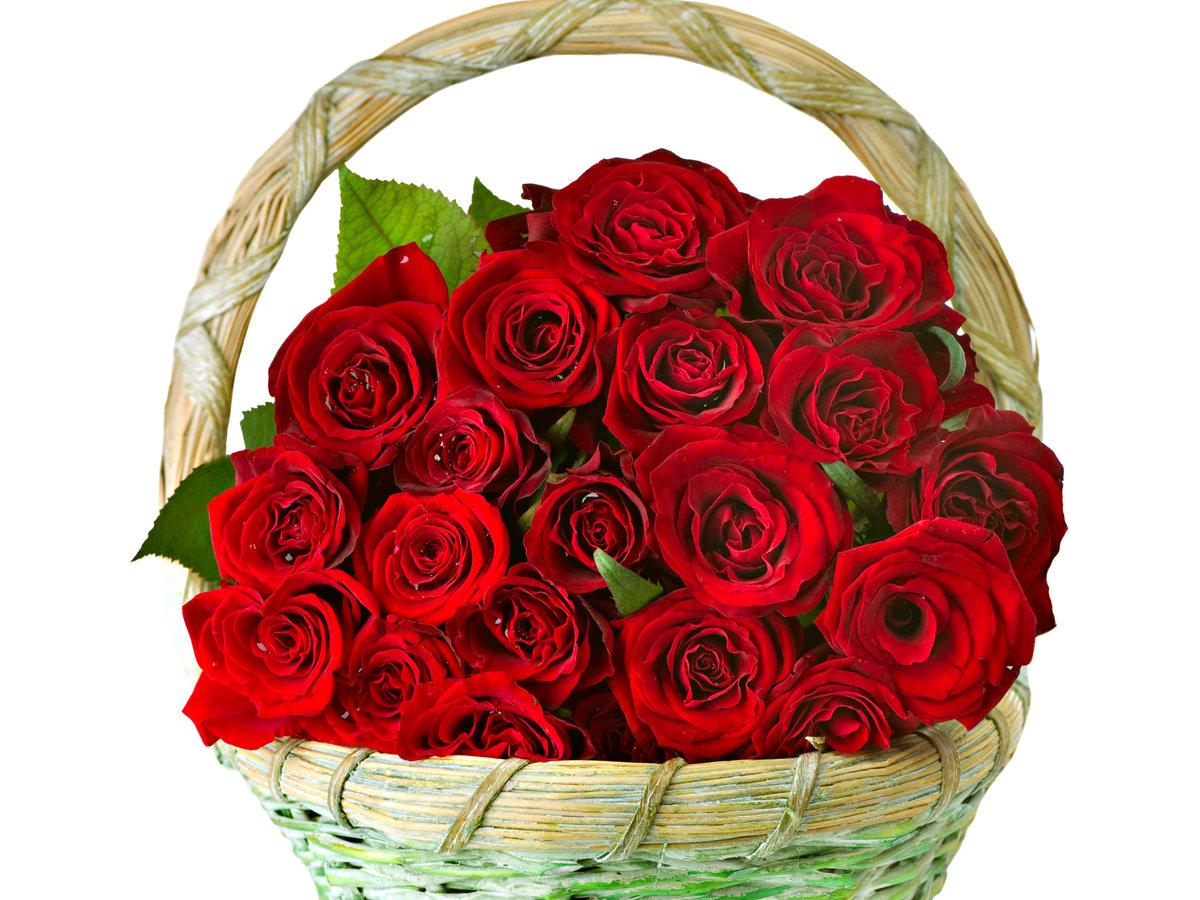 Открытка с днем рождения женщине розы красные в корзине, днем рождения открытки