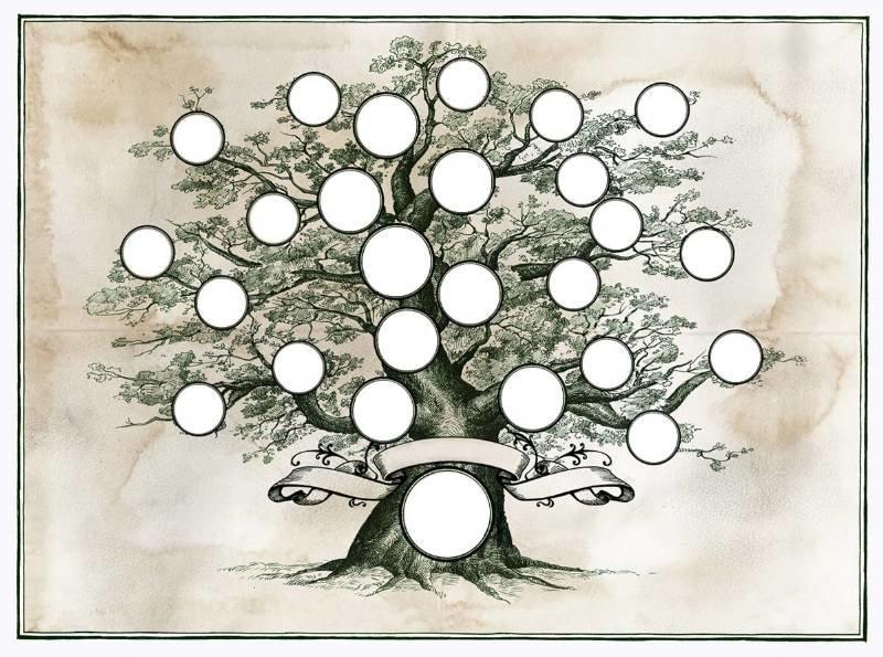 родинне дерево шаблон картинки распечатать девушку
