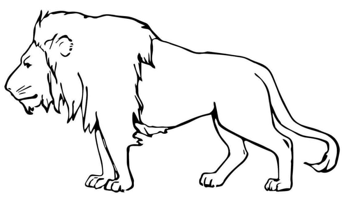 рисунок хищника животного песни доносятся колонок