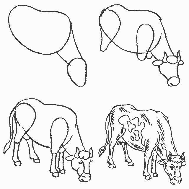 Картинка как рисовать корову