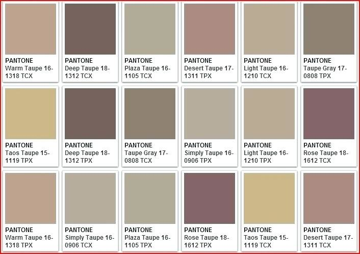 What Does The Color Taupe Look Like