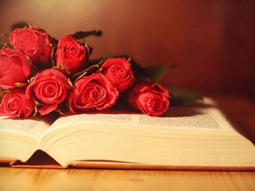 Поздравительные открытки с книгами
