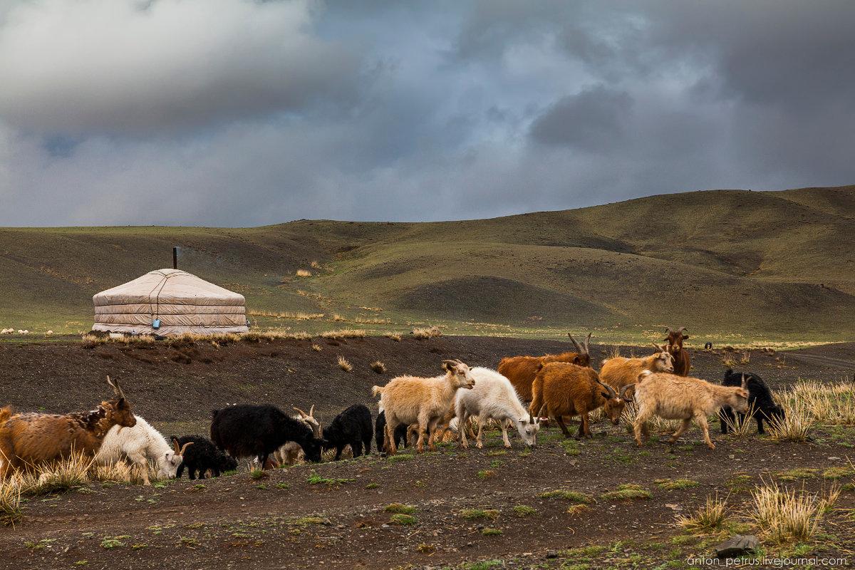 дизайна фото и картинки монголии первого сезона момент