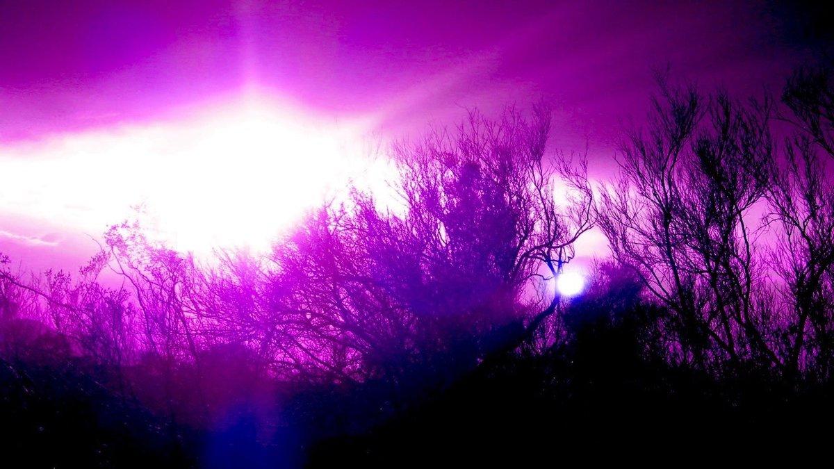 Картинки фиолетового цвета фото