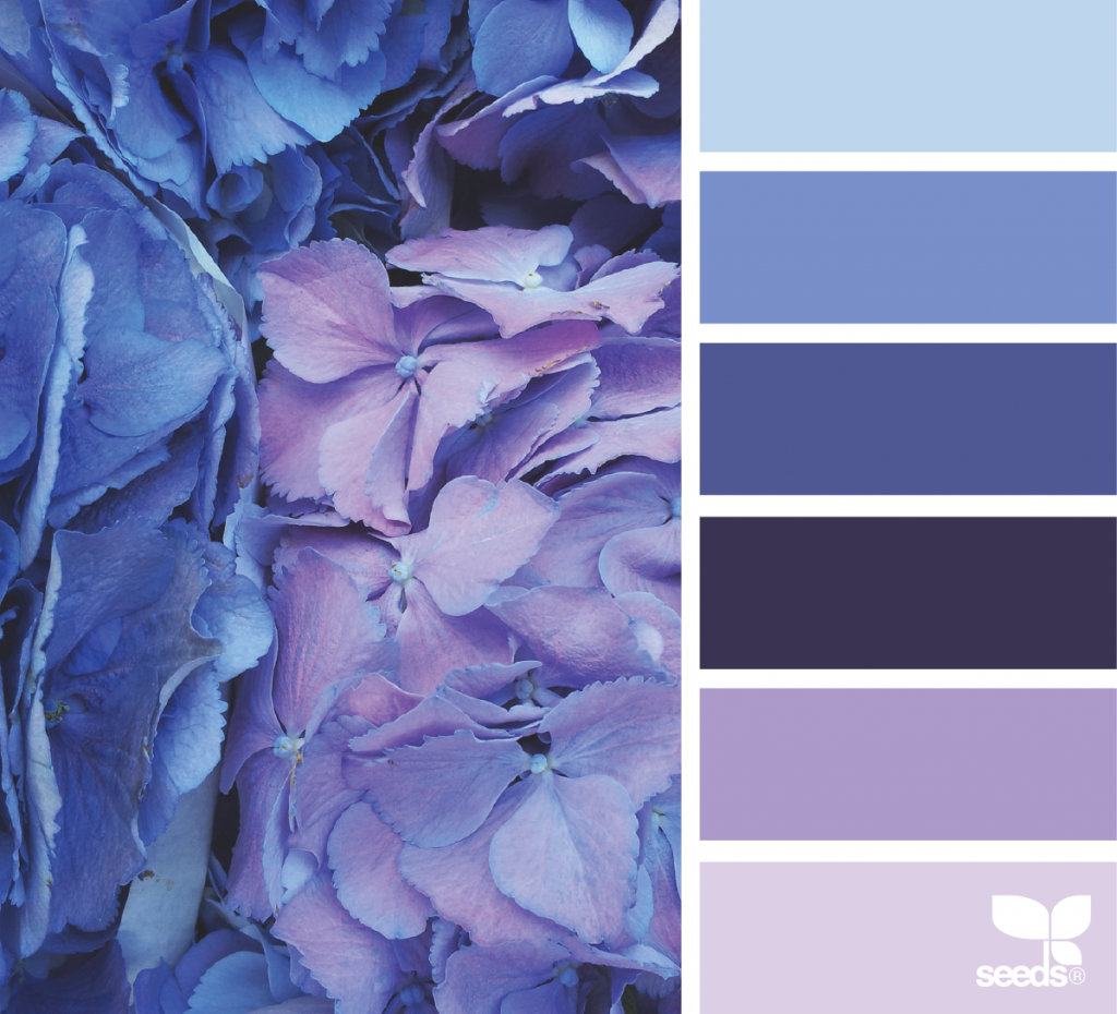 оформление сочетание цветов в картинках синий поздравления коллег уверенье