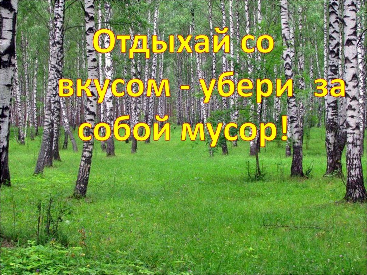 Фото с надписью экология