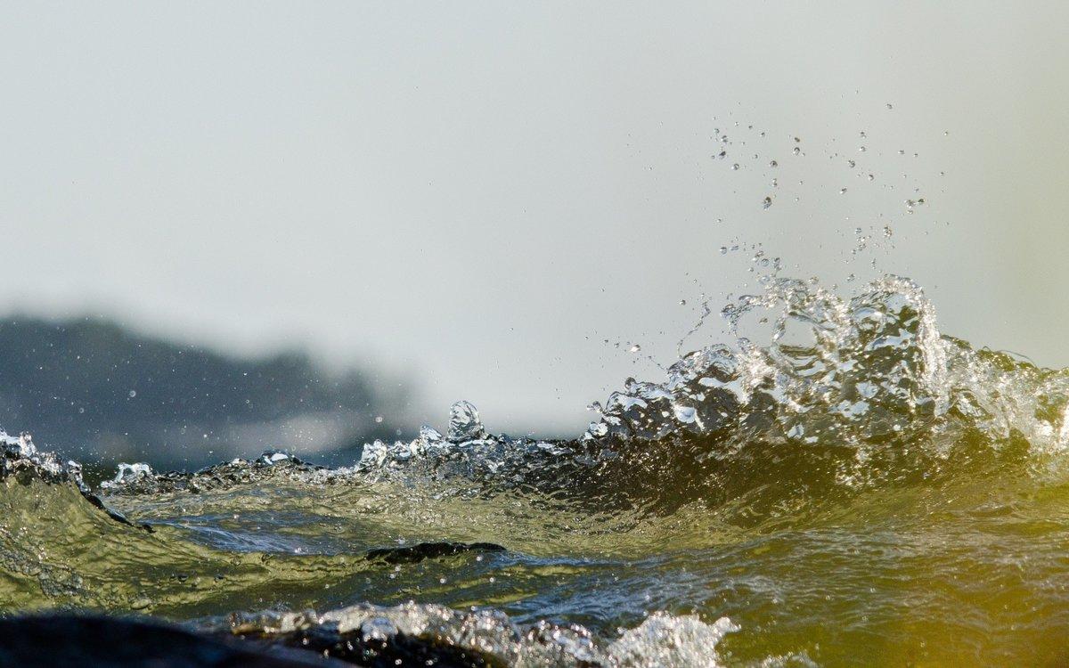 женщины, картинка вода бульбы елец