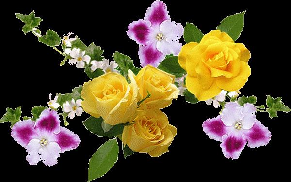 Картинки цветы анимация на белом фоне, сладостями для
