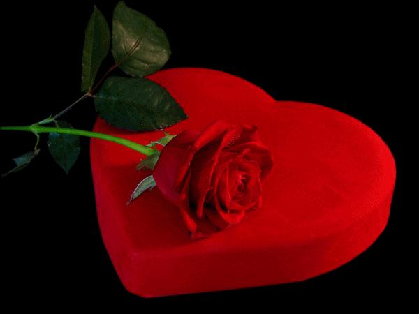 Видео открытку признания в любви, поздравлений