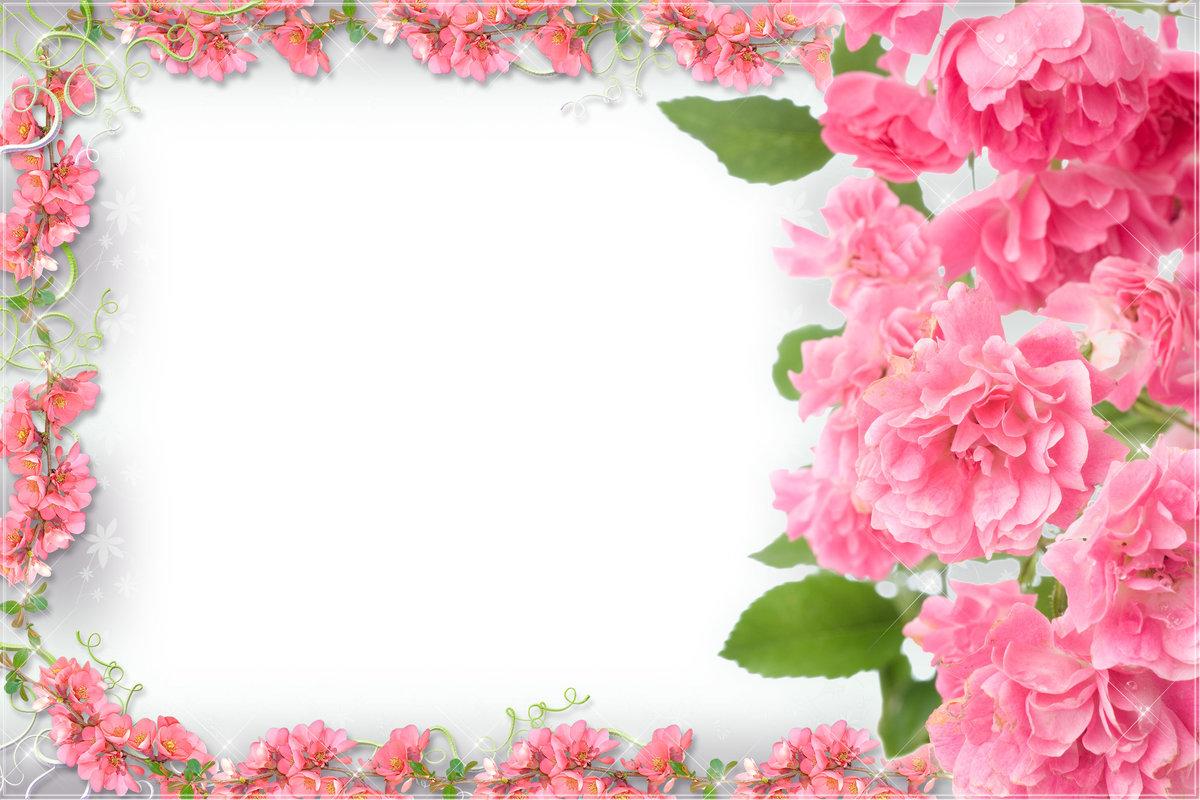 Рамки из цветов в открытках