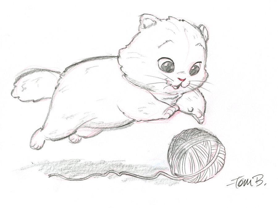 Картинки для, рисунки для срисовки котята милые и смешные