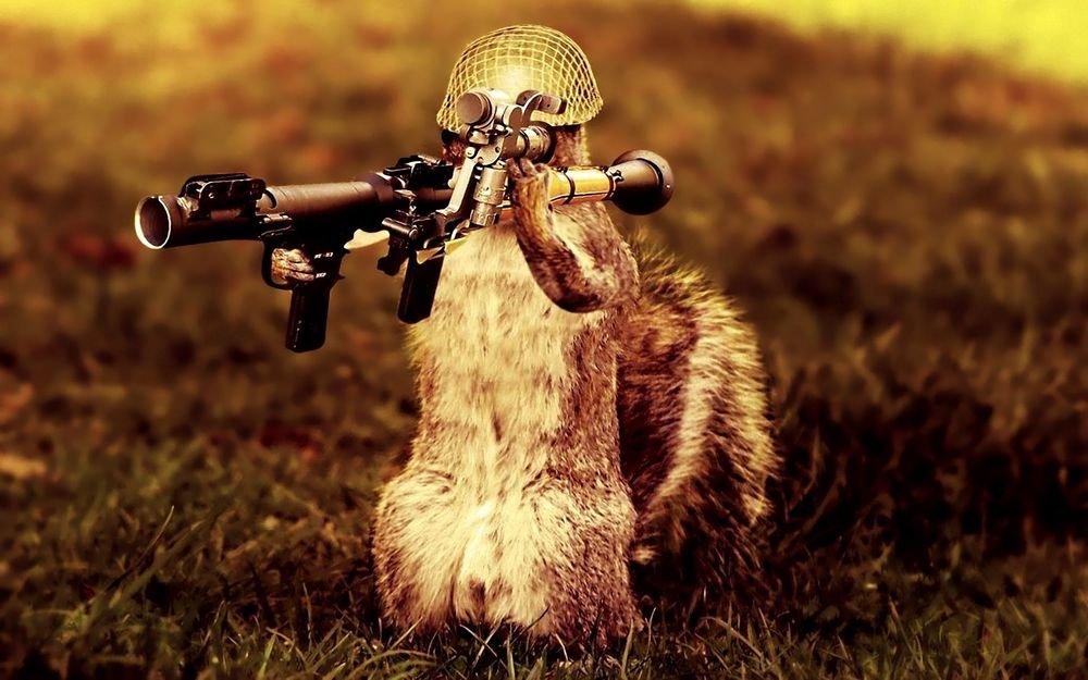 Открытка, прикольные картинки оружие