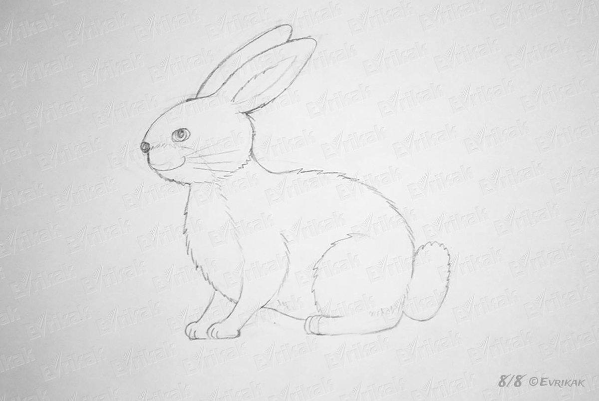 Картинки карандашом зайчика