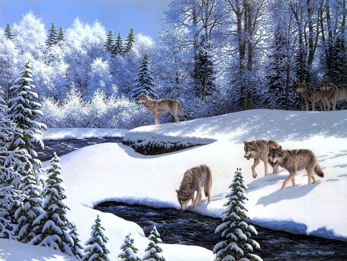 Открытки с животными в лесу, поздравление марта