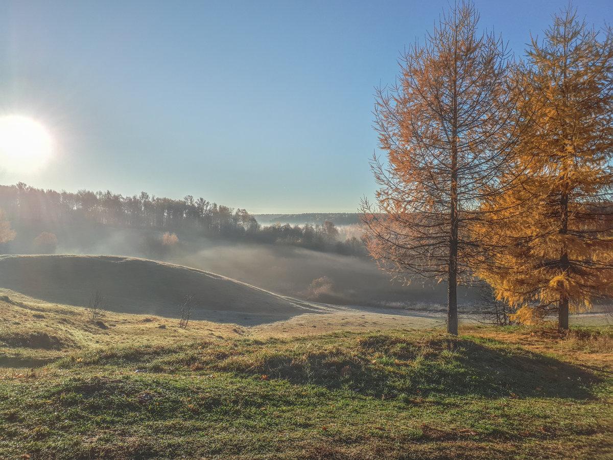осень. утро. туман. иней. солнце.